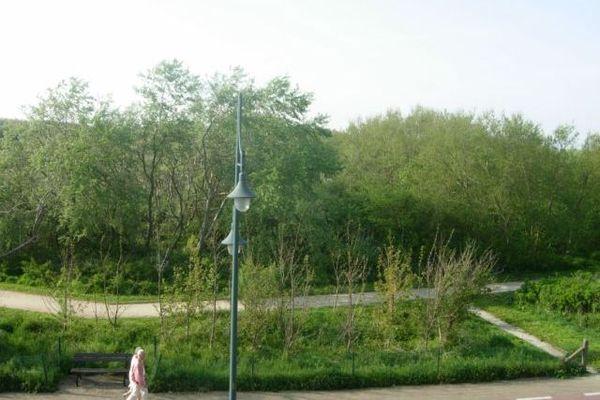 Kapelstraat S2 Bredene West Flanders Belgium
