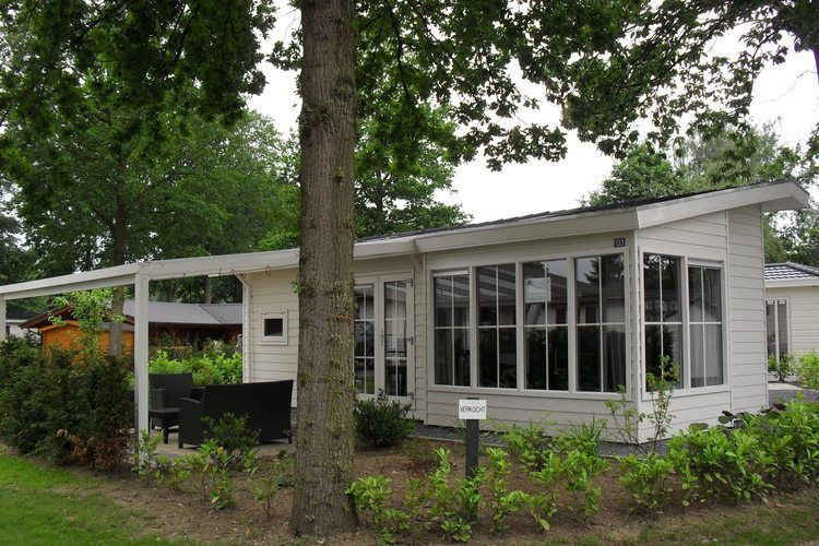 Hommelheide Echt Limburg Netherlands