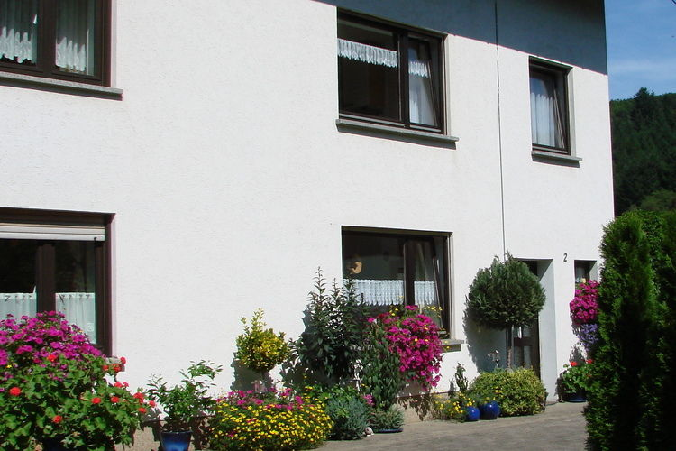 Hunz Schutz Eifel Germany