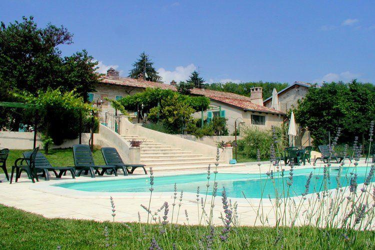 Girasoli Camino Monferrato Piedmont Italy