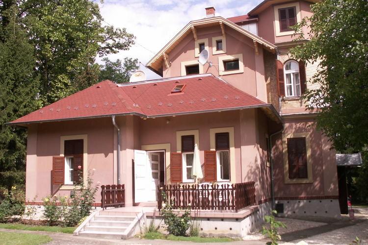 Tomi Balatonfoldvar Balaton Hungary