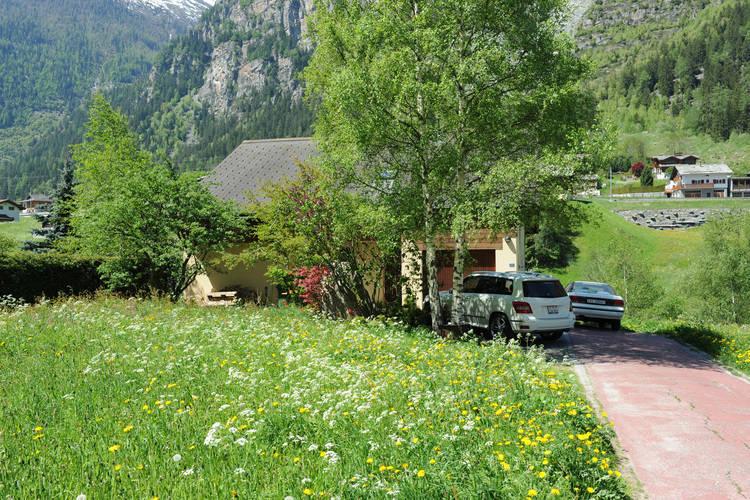 Volpe Mattertal Valais Switzerland