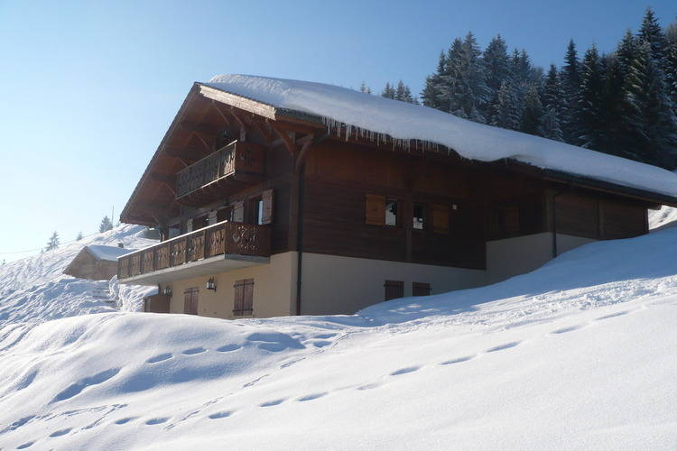 Chalet Le Bouquetin - Apartment - Les Gets - Exterior - Winter