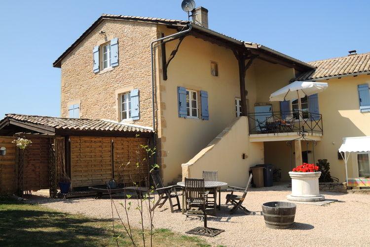 Vineyard Macon Vinzelles Burgundy France