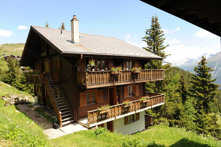 Bittel Aletscharea Valais Switzerland