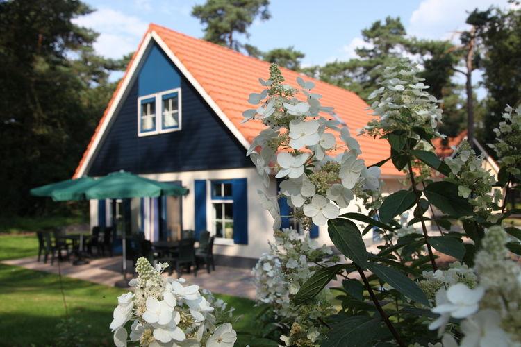 Assen Midden-Drenthe Drenthe Netherlands