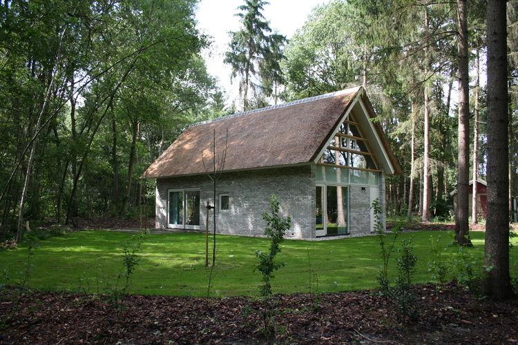 Dwingelderveld Drenthe Netherlands