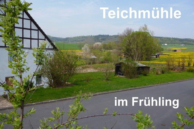 Teichmuehle Frankenberg (Eder) Hesse Germany