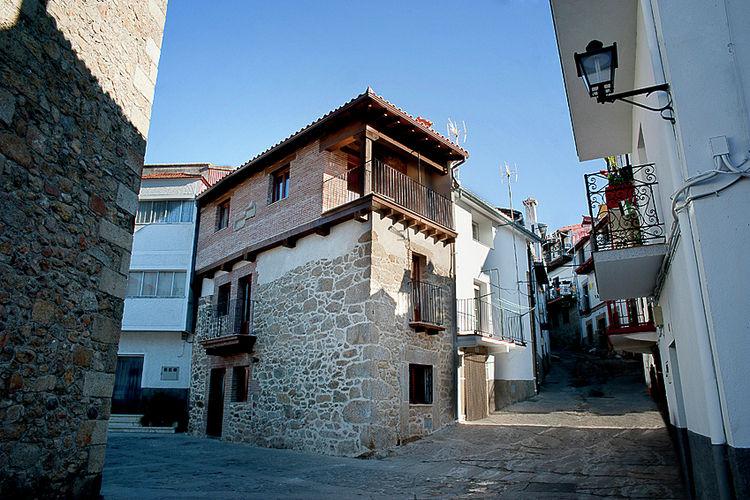Arbequina Casas del Monte Extremadura Spain