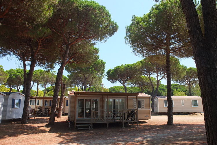 Pineta Cottage  Emilia-Romagna Italy